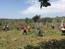 Students Preparing Their Farm Area for Planting