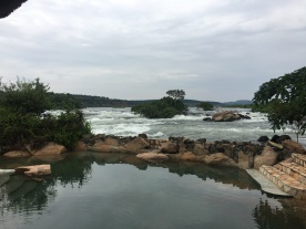 View at Wildwaters Lodge
